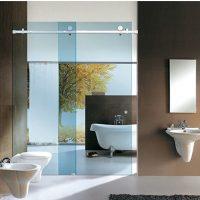 Ca bin tắm kính cửa trượt ray inox CBRI01